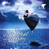 Secret Dream by David Wahler