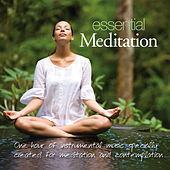 Play & Download Essential Meditation by Patrick Kelly | Napster