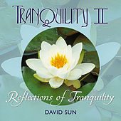Play & Download Tranquility II by David Sun | Napster
