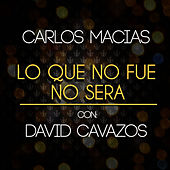 Play & Download Lo Que No Fue No Será by David Cavazos | Napster