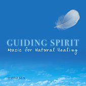 Play & Download Guiding Spirit by David Sun | Napster