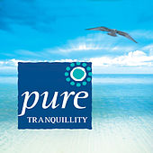 Play & Download Pure Tranquility by Stephen Rhodes | Napster