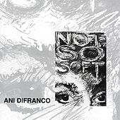 Play & Download Not So Soft by Ani DiFranco | Napster