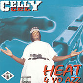 Heat 4 Yo Azz by Celly Cel