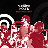 How Does It Feel by The Waking Hours