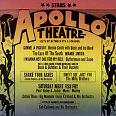 Play & Download Stars of the Apollo by Various Artists | Napster