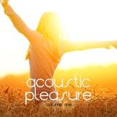 Acoustic Pleasure, Vol. 1 by Various Artists