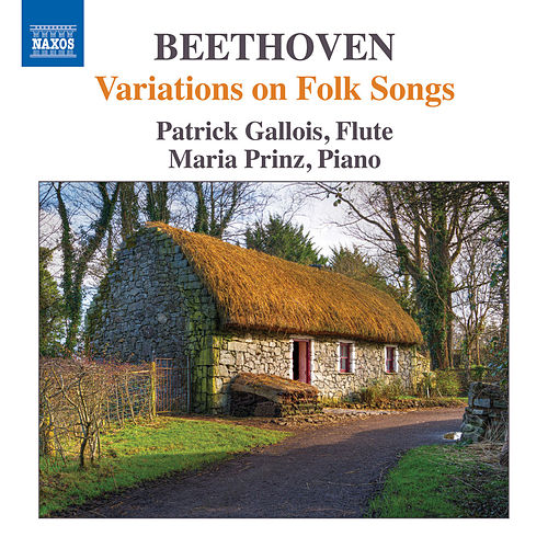 Play & Download Beethoven: Variations on Folk Songs by Patrick Gallois | Napster