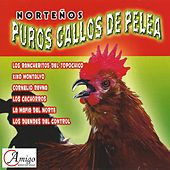 Play & Download Norteños Puros Gallos de Pelea by Various Artists | Napster