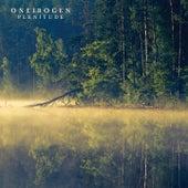Plenitude by Oneirogen