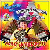 Play & Download Puro Cumbion by Aniceto Molina | Napster