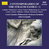 Contemporaries of the Strauss Family, Vol. 1 by Czech Chamber Philharmonic Orchestra Pardubice