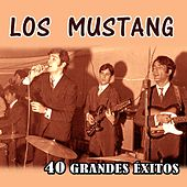 40 Grandes Éxitos by Mustang