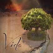 Play & Download Vida by Vida | Napster