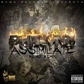 Play & Download Assimilate (Rolaz Remix) by Phalynx | Napster