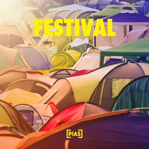 Festival by Various Artists