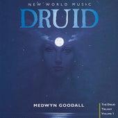 Druid by Medwyn Goodall