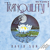 Play & Download Tranquility by David Sun | Napster