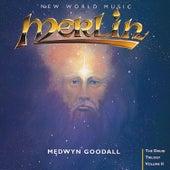 Merlin by Medwyn Goodall
