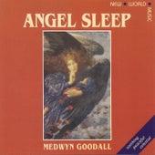 Angel Sleep by Medwyn Goodall