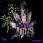 Purple Haze by Phalynx