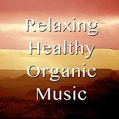 Relaxing Healthy Organic Music by Various Artists