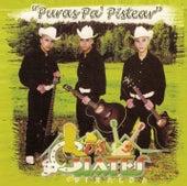 Puras Pa' Pistear by Los Cuates De Sinaloa
