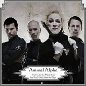 Play & Download You Pay For The Whole Seat But You'Ll Only Need The Edge by Animal Alpha | Napster
