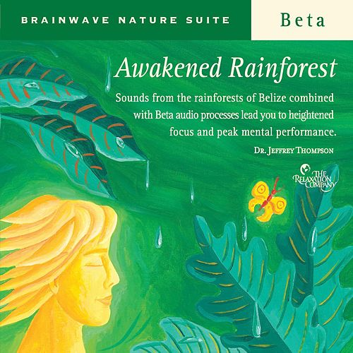 Play & Download Awakened Rainforest by Dr. Jeffrey Thompson | Napster