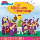 Kurzgeschichte - Der Minihexen-Geburtstag von Bibi Blocksberg