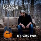 It's Going Down by Shane Dawson