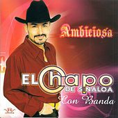 Play & Download Ambiciosa by El Chapo De Sinaloa | Napster