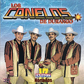 Play & Download 17 Exitos Nortenos by Los Canelos De Durango | Napster