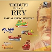 Tributo para el Rey, José Alfredo Jiménez by Various Artists