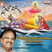 Vishnu Shasranama Stotramu - Bhajgovindham by S.P. Balasubramanyam