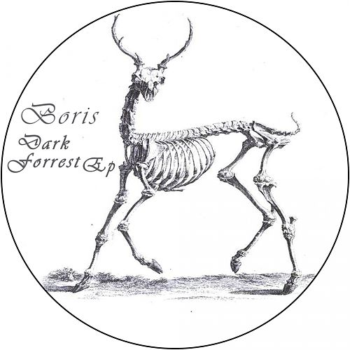 Dark Forrest - Single von Boris