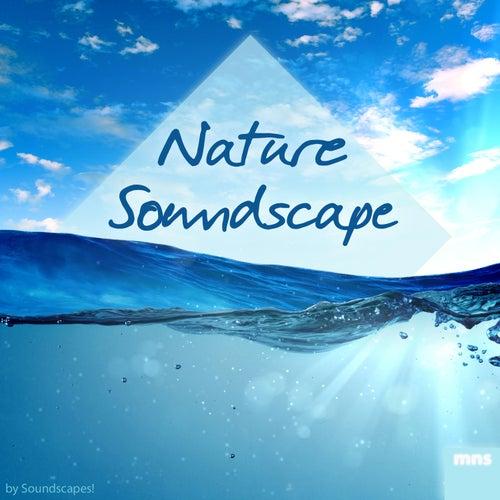 Play & Download Nature Soundscape by soundscapes | Napster
