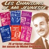 25 artistes chantent les succès de Michel Rivgauche (Collection