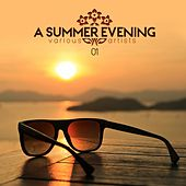 Play & Download A Summer Evening Vol. 01 by Various Artists | Napster