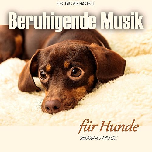 Play & Download Beruhigende Musik für Hunde (Relaxing Music) by Electric Air Project | Napster