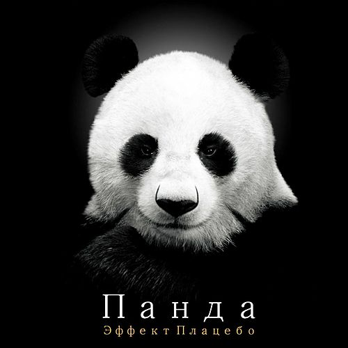 Play & Download Placebo Effect by Panda | Napster