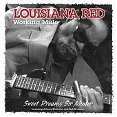 Working Mule by Louisiana Red