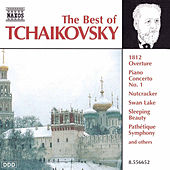 Play & Download The Best of Tchaikovsky by Pyotr Ilyich Tchaikovsky | Napster