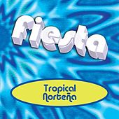 Play & Download Fiesta Tropical Norteña by Various Artists | Napster