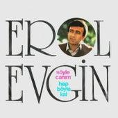 Play & Download Söyle Canım / Hep Böyle Kal by Erol Evgin | Napster