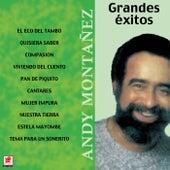 Grandes Exitos Andy Montañez by Andy Montañez