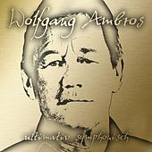 Play & Download Ultimativ Symphonisch by Wolfgang Ambros | Napster