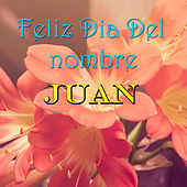 Play & Download Feliz Dia Del nombre Juan by Various Artists | Napster