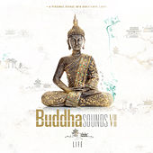 Play & Download Life by Buddha Sounds | Napster