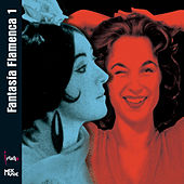 FantasÍa Flamenca 1 by Chano Domínguez